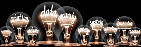 Group of light bulbs with shining fibers in a shape of Data Security, Solution, Business and Technology concept related words isolated on black background Foto de archivo - 129897769