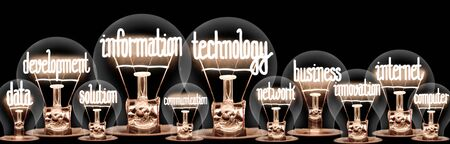 Large group of light bulbs with shining fibers in a shape of Information Technology, Internet, Data, Business and Development concept related words isolated on black background