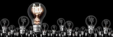 Group of shining and dimmed light bulbs with fibers in a shape of Fake and Fact concept words isolated on black background.