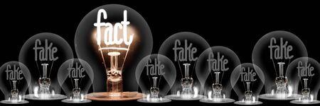 Grupo de bombillas luminosas y atenuadas con fibras en forma de palabras de concepto falso y hecho aislado sobre fondo negro. Foto de archivo