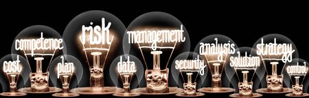 Photo of light bulb group with shining fibers in a shape of Risk Management, Strategy, Competence and Cost concept related words isolated on black background Stock Photo