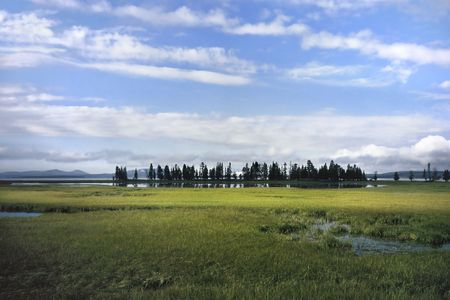 macrocosm:  Yellowstone Lake with a lonely field and a row of trees as compositional elements 2174 x 3263 px