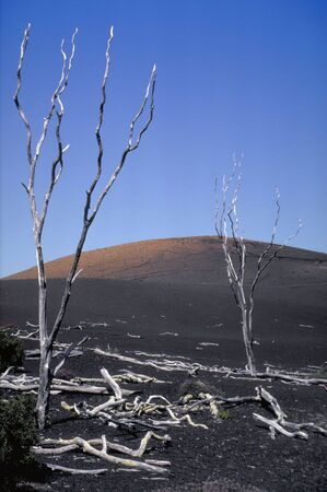 obliteration: Desolate landscape on the slope of the volcano, Mauna Loa, Hawaii