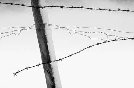 climatology: Black and White Snow Scene with Fence Stock Photo