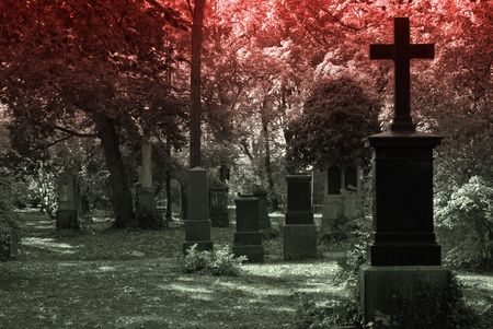grave site: Cemetery Image with Crosses Stock Photo