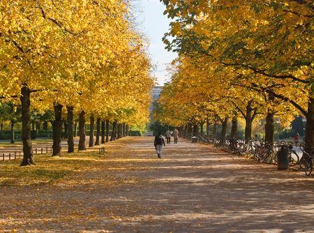 Munich Hofgarten on a Colorful Autumn Day Stock Photo