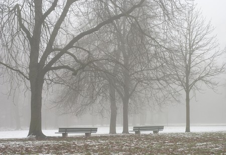 Two Seats Along a Lonely Foggy Path  photo