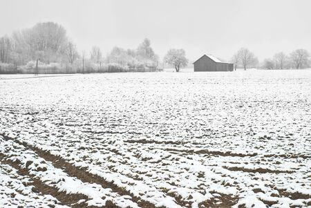 Winter Farming In Germany as Symbol of European Agricultural  photo
