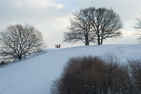 Group of Children at the top of a Sleigh Riding Hill photo