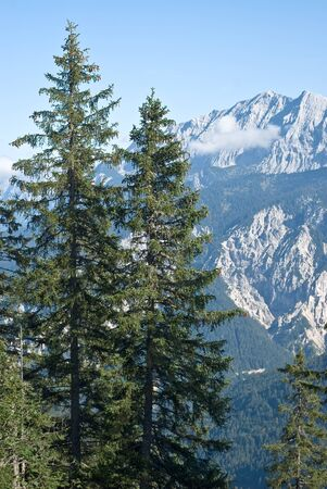 Mountain Vista with Trees in the German Alps Stock Photo - 11073914