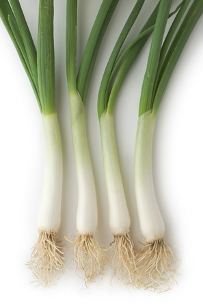 Spring Onions as a Healthy and Nutritious Dietary Supplement  Stock Photo