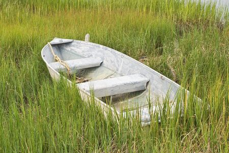 Fishing Boat in Tall Grass on the Shore photo