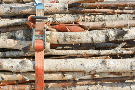 buckled: Cut Wood as Renewable Resource of Energy with Industrial Strap Stock Photo