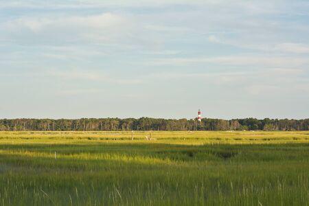 wetland conservation: Wetland Conservation with Lighthouse at the Virginia National Seashore Stock Photo