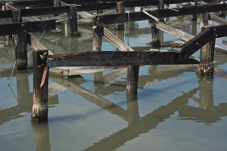 pilings: Old Wharf with Decaying Pilings at a Coastal Harbor