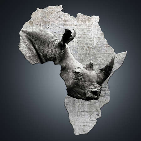 The continent of Africa with a rhino. Creating awarness on poaching. Ceratotherium simum