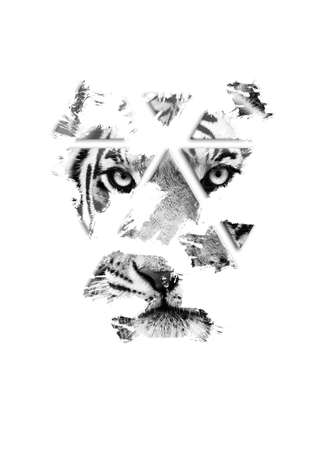 The tiger is watching you. Black and white, fine art. Panthera tigris
