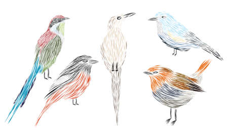 A set of different fine art illustrated birds designed with brush strokes Ilustracja