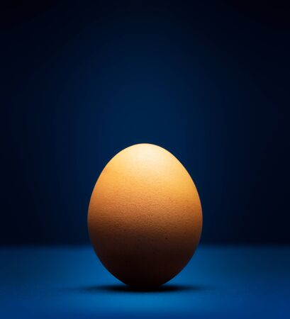 Egg on a classic blue background close-up with dramatic lighting. Fine art.
