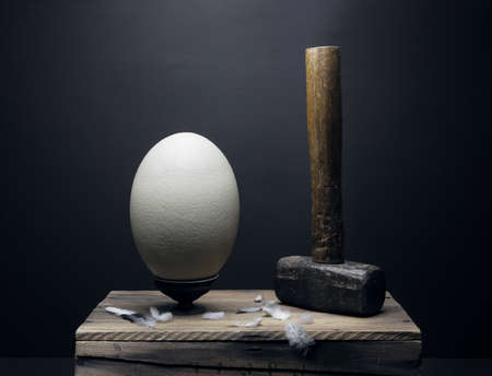 Ostrich egg and hammer fine art still life with feathers on a wooden platform creatively setup creating conceptual art. Fragile versus unbreakable. Stock Zdjęcie Seryjne - 157093446