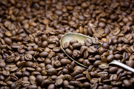 Freshly whole roasted coffee beans close-up with a metal spoon in it.