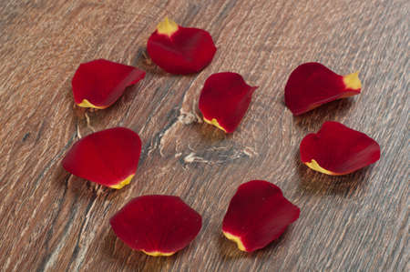 roses petals on wooden board Stock Photo