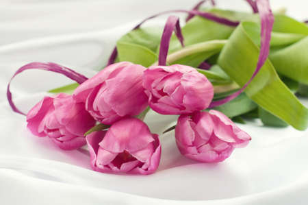 white silk: Pink tulips on white silk with ribbon