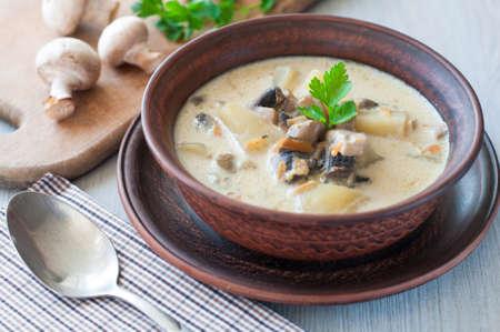 bowl of vegetarian mushroom soup Standard-Bild