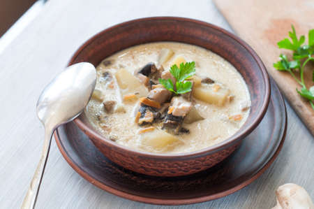 bowl of vegetarian mushroom soup Stock Photo