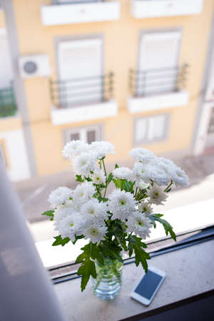 fresh chrysanthemum in vase, on the window sill