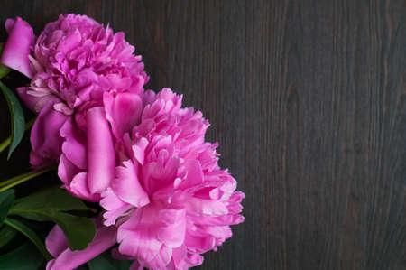 pfingstrosen: frische rosa Pfingstrosen auf rustikalem Holzuntergrund Lizenzfreie Bilder