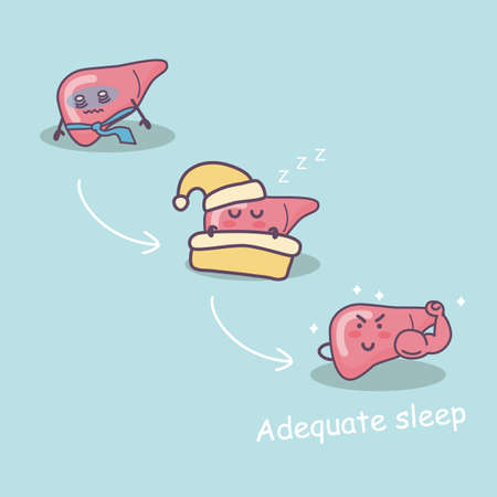 adequate: adequate sleep is good for liver,  great for health care concept