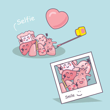 bowel surgery: Happy organ cartoon take a selfie - heart, lung, liver, stomach and intestine cartoon, great for health care concept