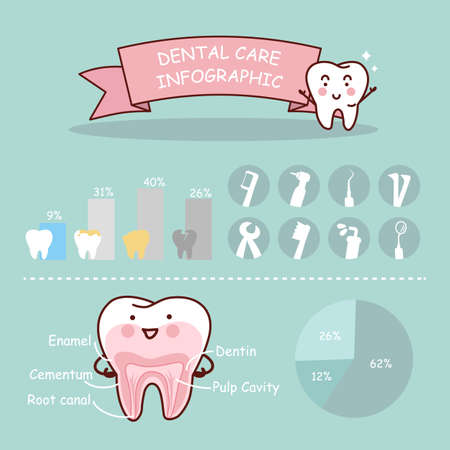 human anatomy: Dental health care infographic, great for health dental care concept