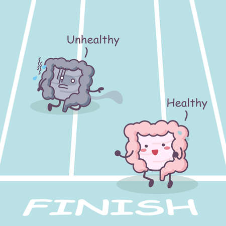 sigmoid: Cute cartoon Healthy and unhealthy intestine racing - great for health care concept