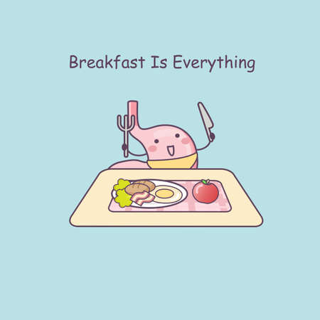 gut: cute cartoon stomach eat breakfast, great for health care concept Illustration