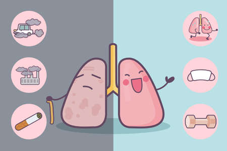before: Before and after lung, great for health care concept Illustration