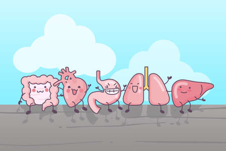 alimentary: cute cartoon intestine,heart,stomach,lung and liver, sittinig together Illustration