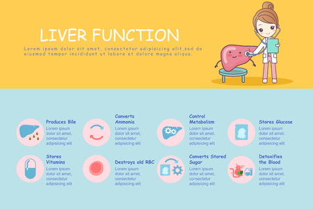 infographic of liver function, great for health care concept Illustration