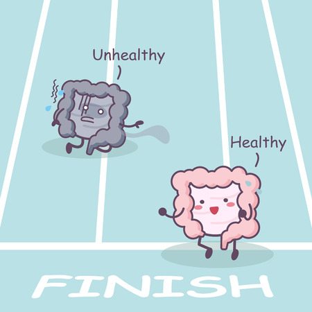 ileum: Cute cartoon Healthy and unhealthy intestine racing - great for health care concept