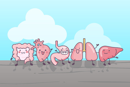 cute cartoon intestine,heart,stomach,lung and liver, sittinig together Illustration