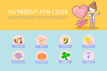 infographic of liver , great for health care concept Illustration