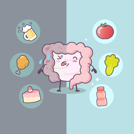 Cute cartoon Healthy and unhealthy intestine with food - great for health care concept Vectores