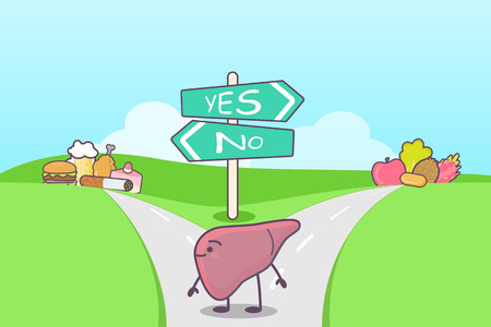 seperated: cute cartoon liver think confused between health food and unhealth food on the seperated road, great for health care concept