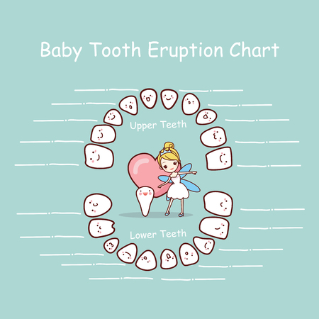 cartoon Baby tooth chart eruption record, great for health dental care concept