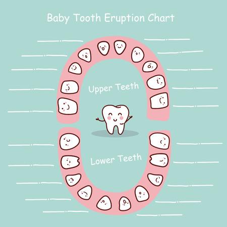 Baby-Zahn-Chart Eruption Rekord, groß für Gesundheit Zahnpflege-Konzept