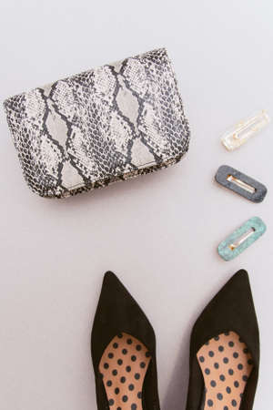 Fashionable hairpins, a snakeskin bag with an animal print and black women's shoes on a beige pastel background. The concept of style and women's accessories, flat lay Standard-Bild