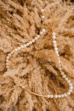 Pearl necklace on the background of wheat. Jewelry round pearls on the background flowers.