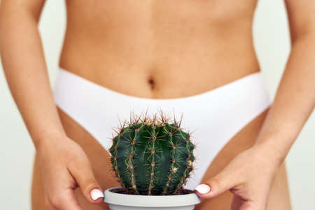 The girl holds a large cactus in the groin or bikini area. The concept of intimate hygiene, epilation and depilation, deep bikini shaving.