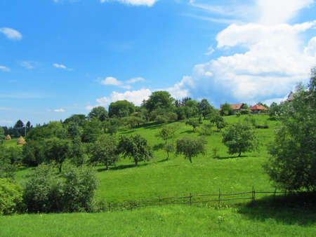 Bright countryside                            photo